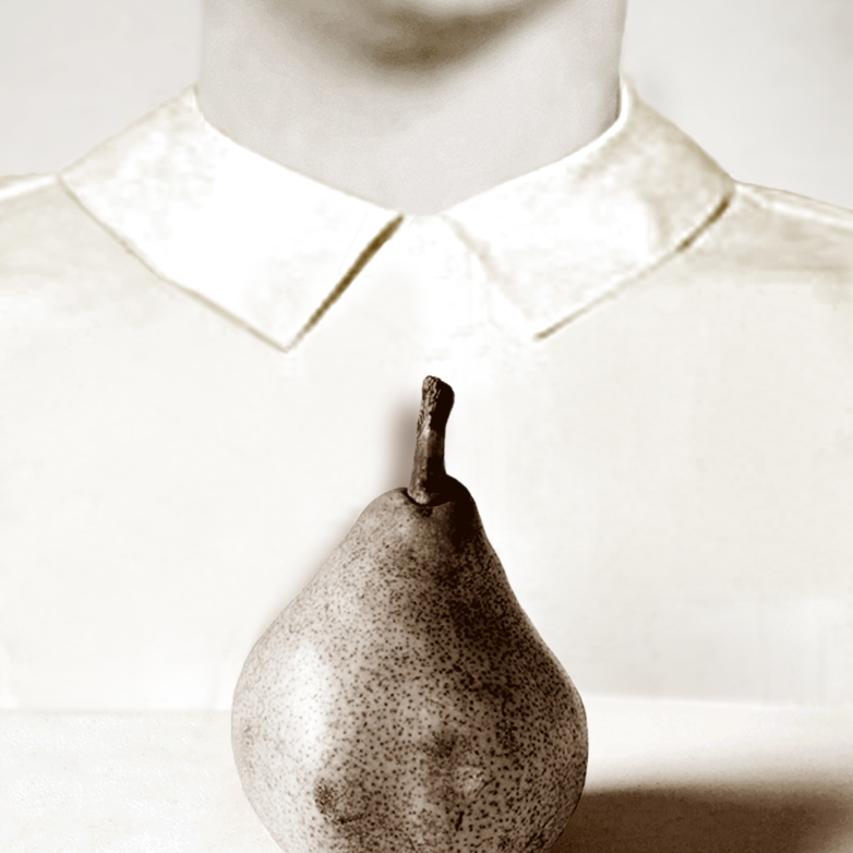 Pat Brassington, Pair Bonding, 2015. Pigment print, 78 x 59cm, edition of 8 + 2AP. Image courtesy of the artist and Stills Gallery, Sydney. © the artist.